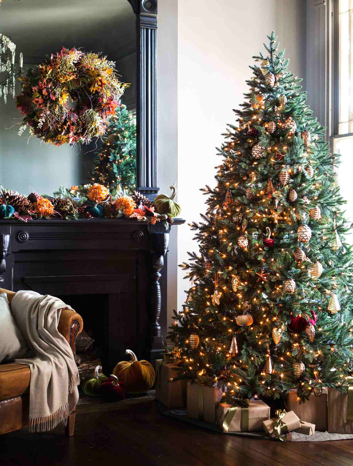 colorado mountain spruce christmas tree decorating ideas. Black Bedroom Furniture Sets. Home Design Ideas