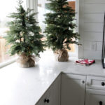 Balsam Fir Tabletop Trees - Tried and True Christmas Home
